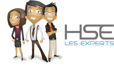 Logo Experts HSE